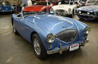 1955 Austin-Healey 100 for sale 101458469