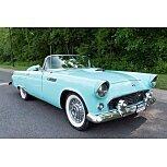 1955 Ford Thunderbird for sale 101594355
