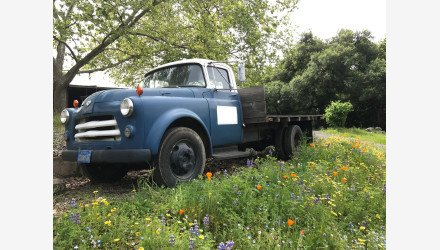 1956 Dodge C-3B Series for sale 101218894