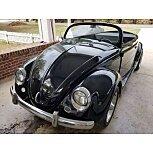 1959 Volkswagen Beetle for sale 101588191