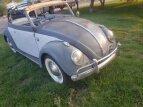 1959 Volkswagen Beetle for sale 101591127