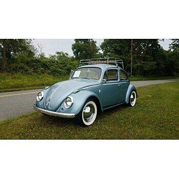 1960 Volkswagen Beetle for sale 101167773