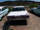1964 Ford Thunderbird for sale 101009619