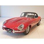 1964 Jaguar XK-E for sale 101350566