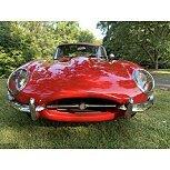 1964 Jaguar XK-E for sale 101566582