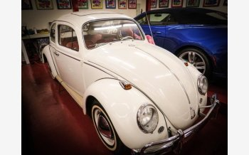 1964 Volkswagen Beetle for sale 101608041