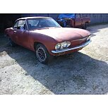 1965 Chevrolet Corvair for sale 101584416