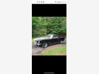 1965 Ford Mustang Fastback for sale 101603906