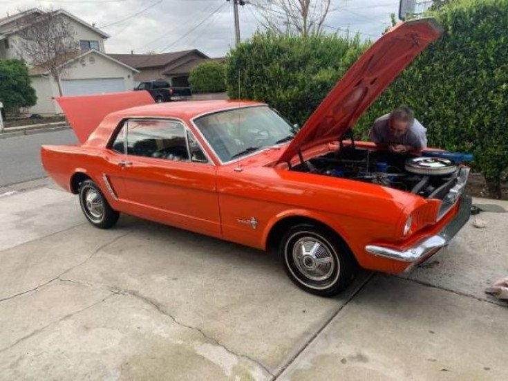 1965 Ford Mustang for sale 101304931
