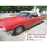1965 Ford Thunderbird for sale 101515338