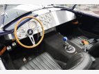 1965 Shelby Cobra for sale 101570291