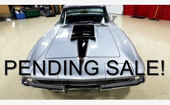 1966 Chevrolet Corvette for sale 100956689
