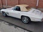 1966 Chevrolet Corvette Convertible for sale 101376032