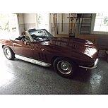 1966 Chevrolet Corvette for sale 101555646