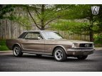 1966 Ford Mustang Coupe for sale 101581581
