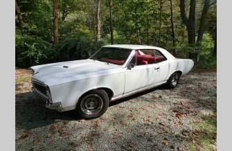 1966 Pontiac Le Mans for sale 101368585