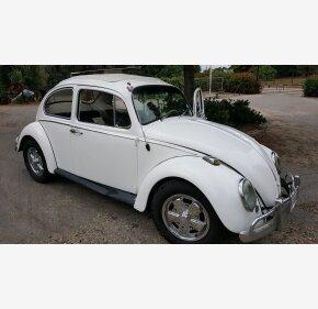 1966 Volkswagen Beetle for sale 100871883