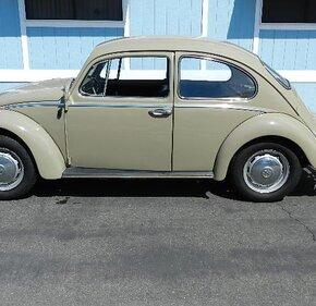 1966 Volkswagen Beetle for sale 101036935