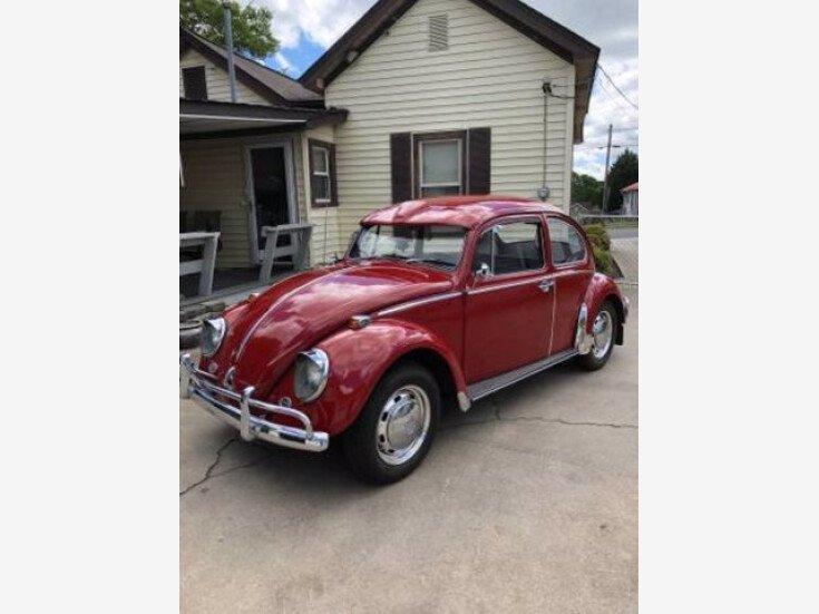 1966 Volkswagen Beetle for sale 101350031