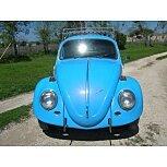 1966 Volkswagen Beetle for sale 101537669