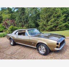 1967 Chevrolet Camaro for sale 101348463