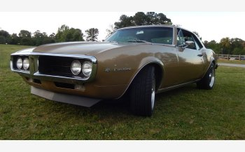1967 Pontiac Firebird Coupe for sale 101327043