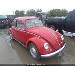 1967 Volkswagen Beetle for sale 101592872
