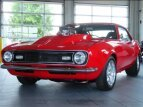 1968 Chevrolet Camaro Z28 Coupe for sale 101568820