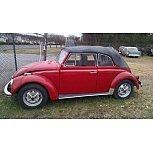 1968 Volkswagen Beetle Convertible for sale 101577296