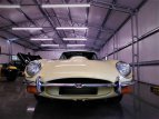 1969 Jaguar E-Type for sale 101416611