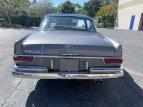 1969 Mercedes-Benz 280SE for sale 101527491