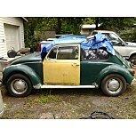 1969 Volkswagen Beetle Convertible for sale 101573740