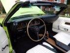 1970 Dodge Challenger R/T for sale 101351696