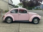 1971 Volkswagen Beetle Coupe for sale 101543719