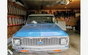 1972 Chevrolet C/K Truck for sale 101380129