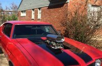 1972 Chevrolet Chevelle SS for sale 101169974