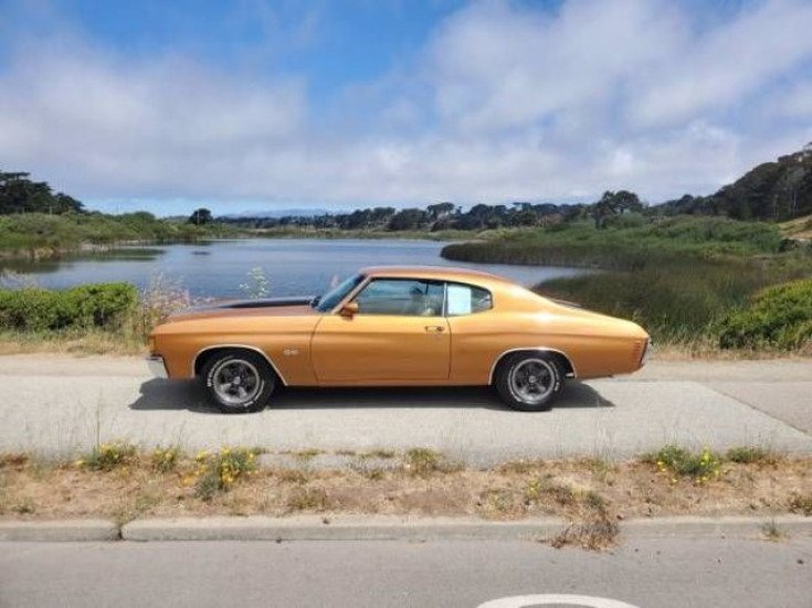 1972 Chevrolet Chevelle SS for sale 101586040