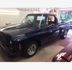 1973 Chevrolet C/K Truck for sale 101426209