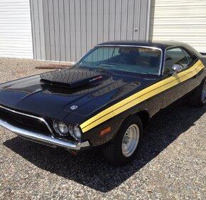 1973 Dodge Challenger for sale 100996935