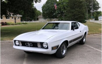 1973 Ford Mustang for sale 101547813