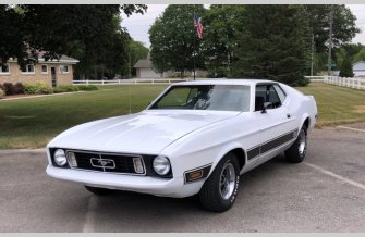 1973 Ford Mustang for sale 101548852