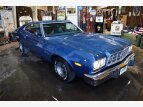 1973 Ford Torino for sale 101559512