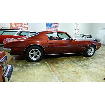 1973 Pontiac Firebird for sale 101132346