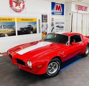 1973 Pontiac Firebird for sale 101496321