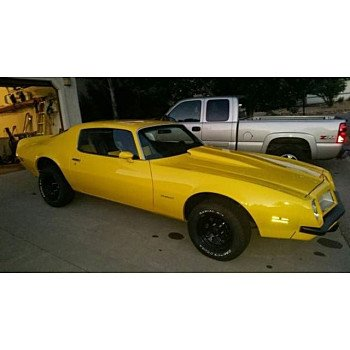 1974 Pontiac Firebird for sale 100829660