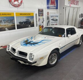 1974 Pontiac Firebird for sale 101482957