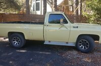 1976 Chevrolet C/K Truck for sale 101290018