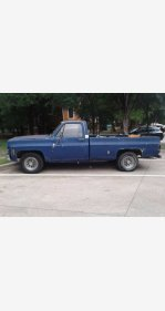 1976 Chevrolet C/K Truck for sale 100928369