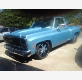 1976 Chevrolet C/K Truck for sale 100952358