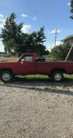 1976 Chevrolet C/K Truck for sale 101047082